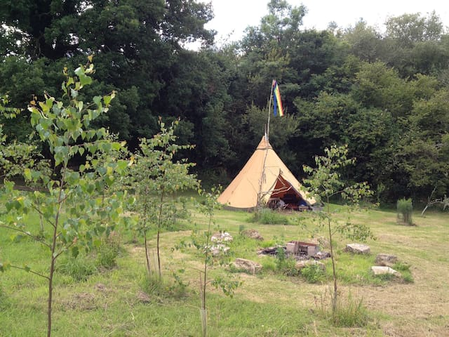 Dartmoor tentTipi - Throwleigh