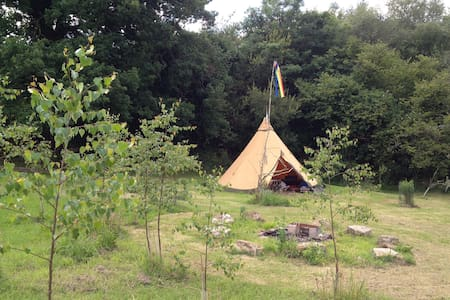 Dartmoor tentTipi - Throwleigh - Tenda Tipi