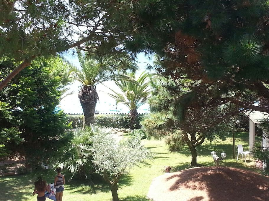 2. The garden of some apartments. Giardino club area sul mare on the beach