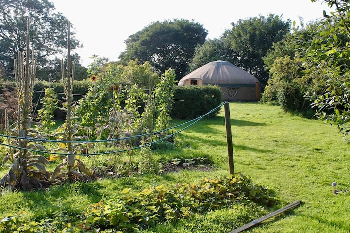 Giant Glamping Yurt: Families, Groups, Hens (6-12)