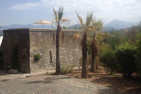 Villa Belvedere - La Torre - House