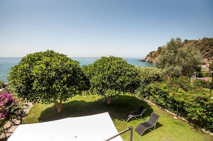 Villa in riva al mare - Bonifati - Vila