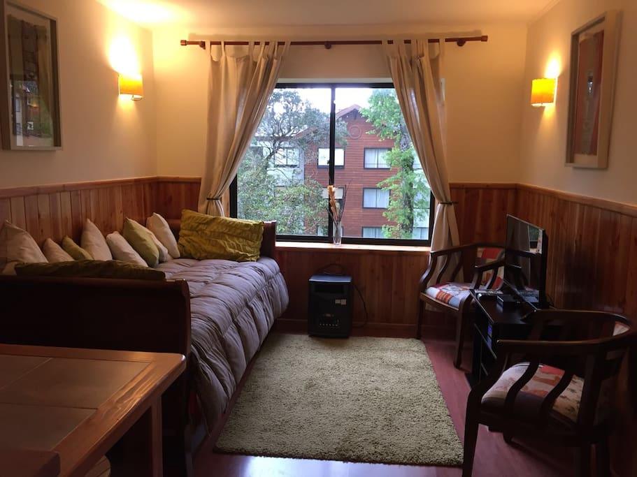 Sala de estar con vista al parque