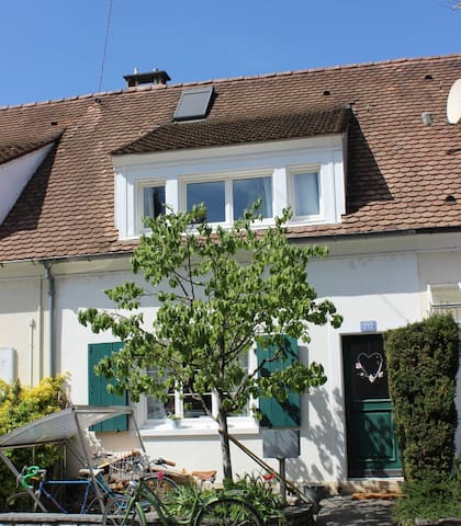 cosy little house with garden - Basel - Haus