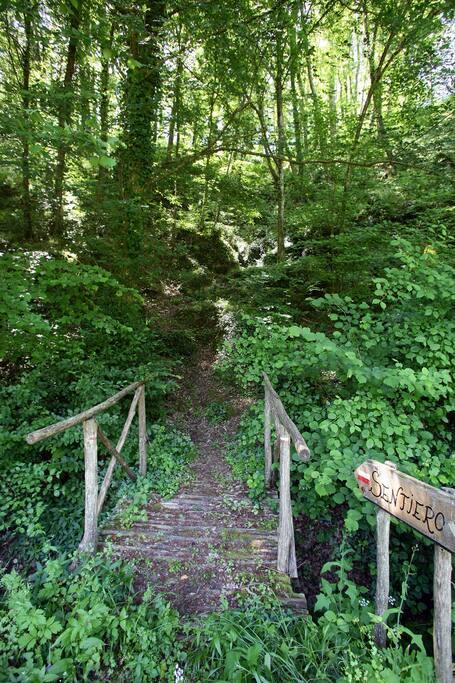 sentiero per arrivare a Pitigliano