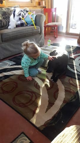 This little guest was having fun petting our dog, Clare. We welcome well-behaved dogs with responsible owners!