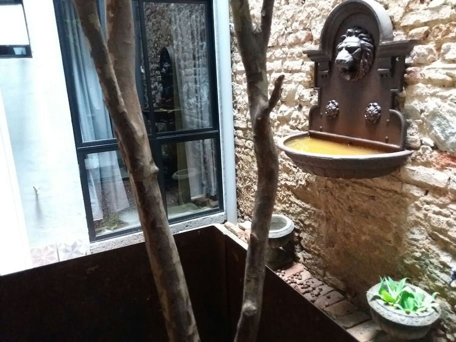 Atrium with fruit tree and fountain.