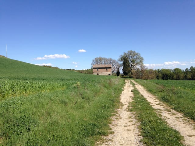 Tuscan farmhouse in the nature