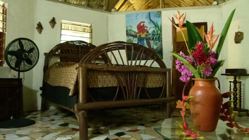 Macaw Bank Belize