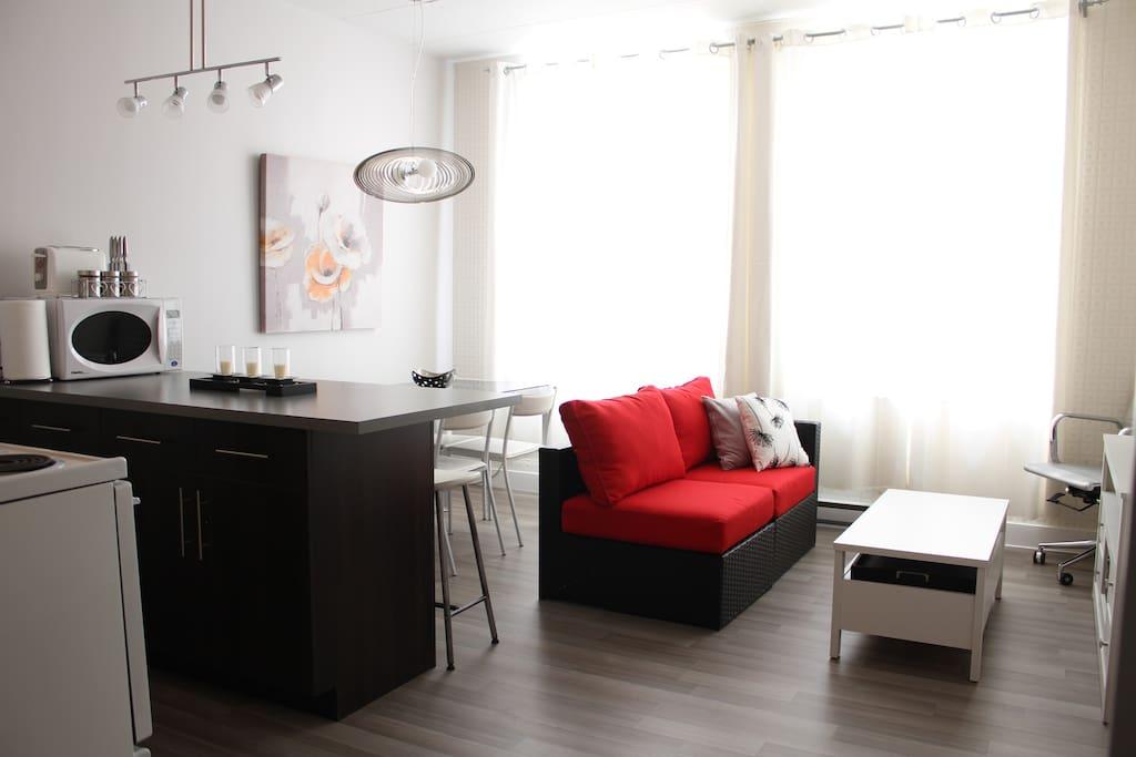 Beau loft urbain r nov et propre appartements louer for Equipement de cuisine quebec