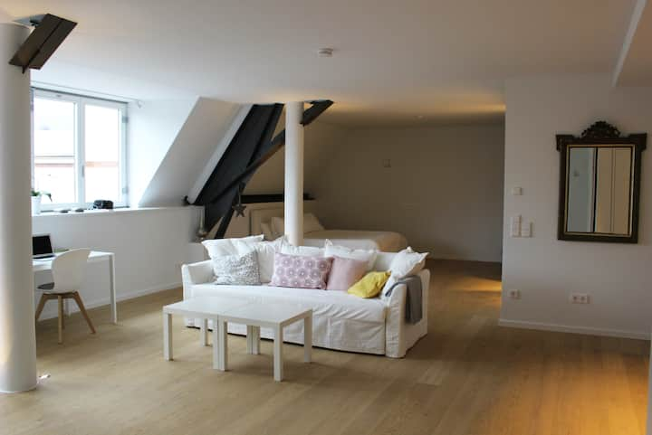 Luxury Loft*  in the centre of Mannheim