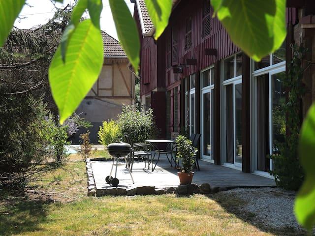 Loft du Rang Chenet - Saint-Nabord - Appartement