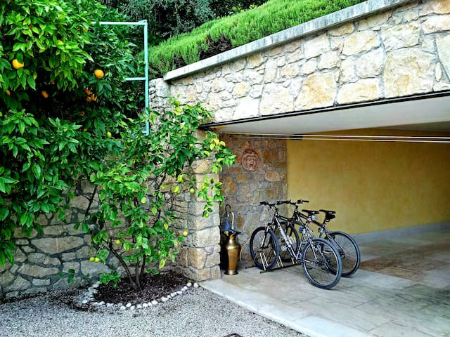 Free mountain bikes for our guests