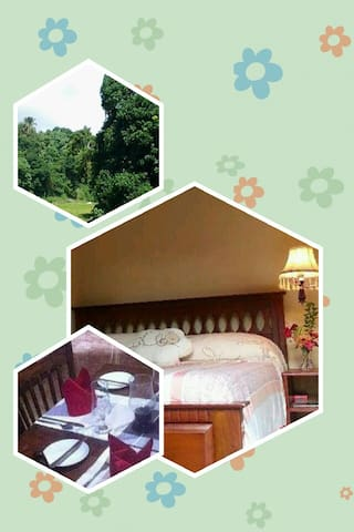 Relax inn(short term holliday rent) - Kandy - Appartement