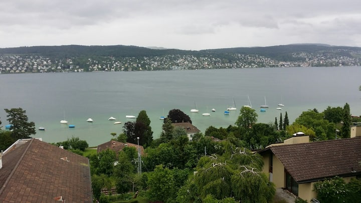 Nearby the City and Lake of Zurich