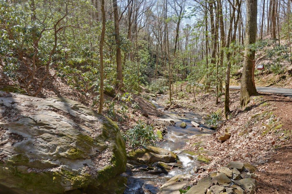 Beautiful creek follows the drive