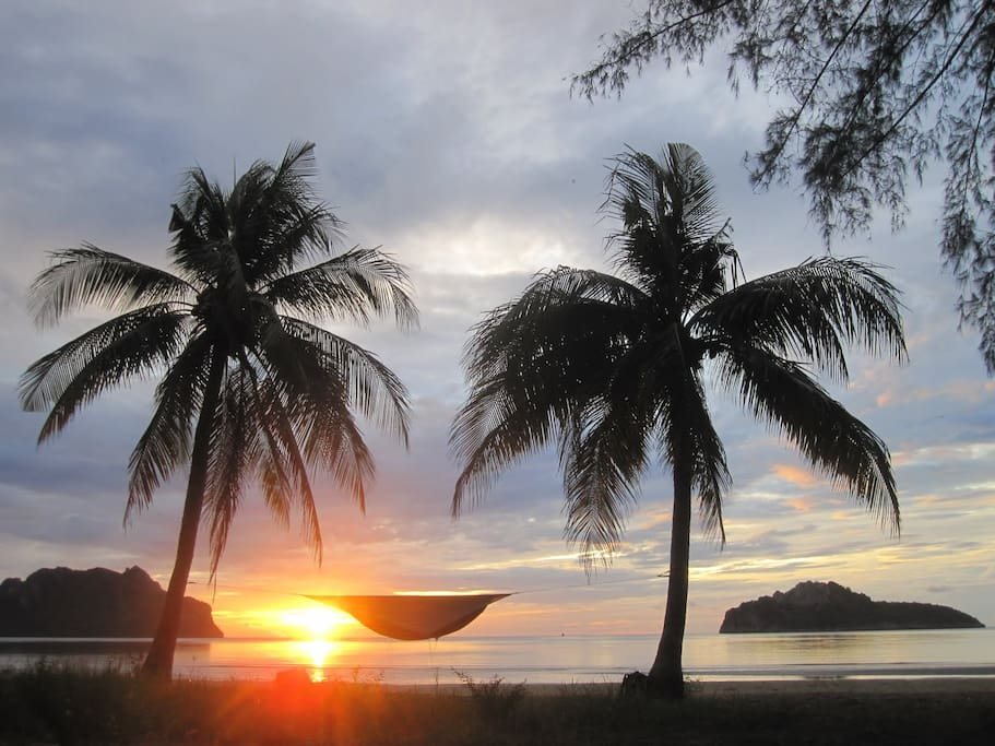 between two palm trees on a Thai beach after a heavy monsoon