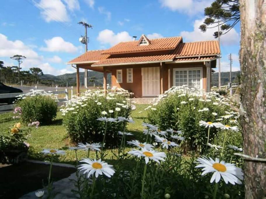 Cabana (1)