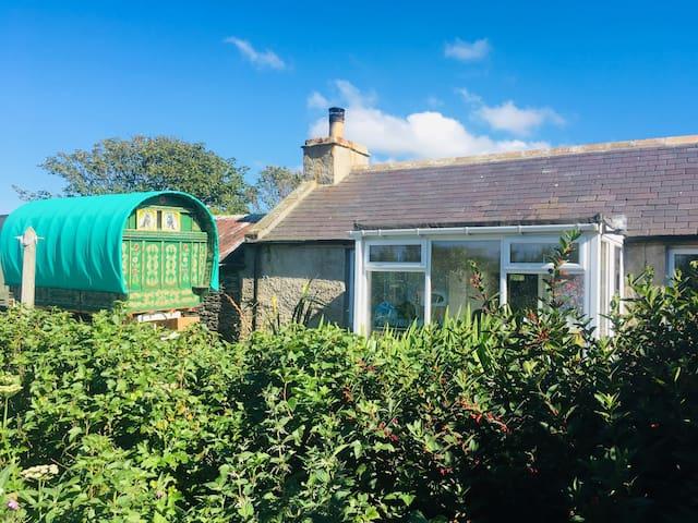 Cottage nestled in a woodland garden