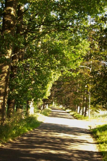 De weg naar de woning, wanneer we hier rijden met de auto komen we vanzelf tot rust en zijn we echt thuis
