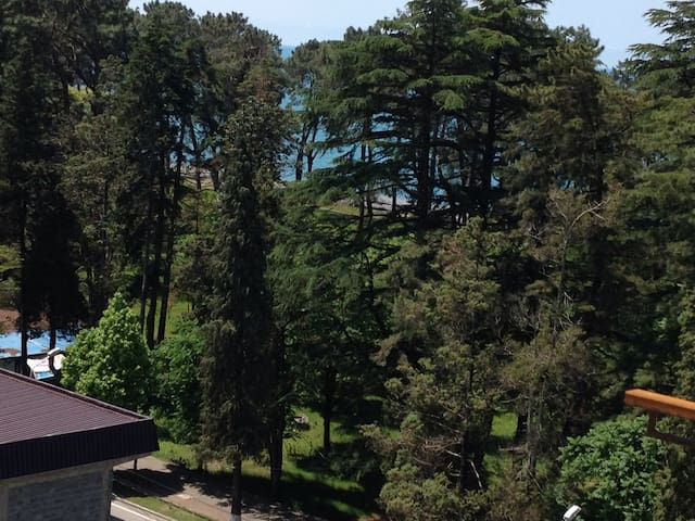 Квартира с видам на море - Kobuleti - อพาร์ทเมนท์