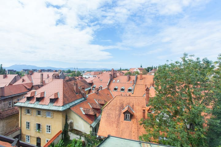 Whole upper floor of our house, under the castle. - Ljubljana  - Loft