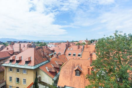 Whole upper floor of our house, under the castle. - Ljubljana  - Лофт