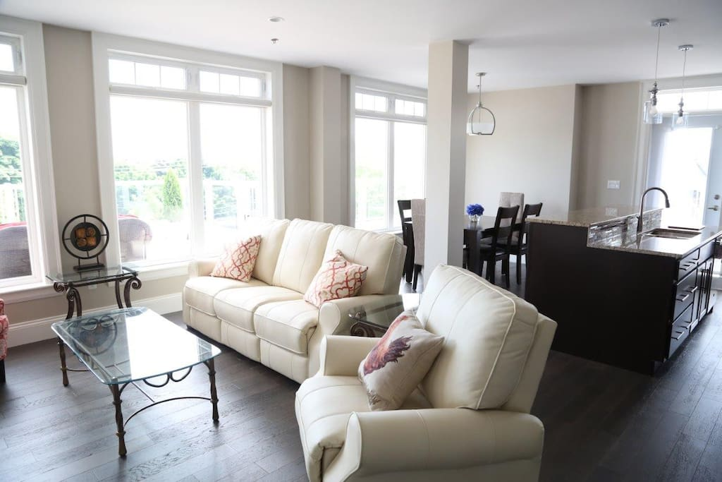Living room, bright all day if desired