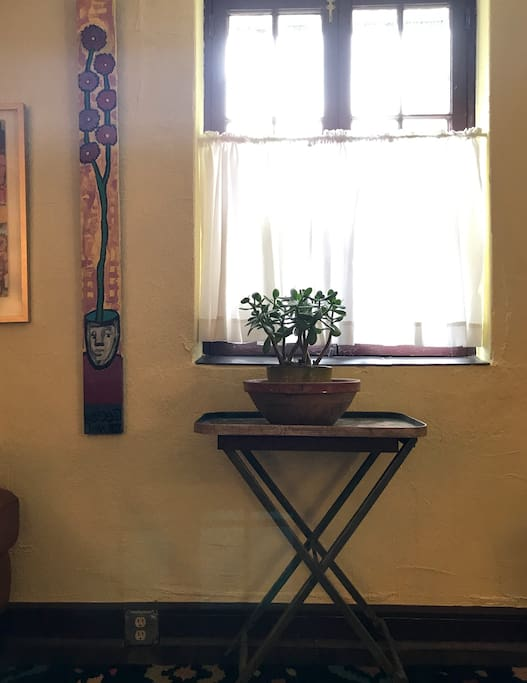 Local art & jade plant