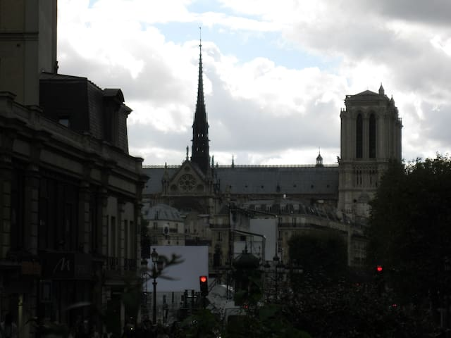 Notre-Dame is just a stone's throw far from the appartment