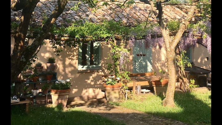 New, Charming,Country cottage, olive grove