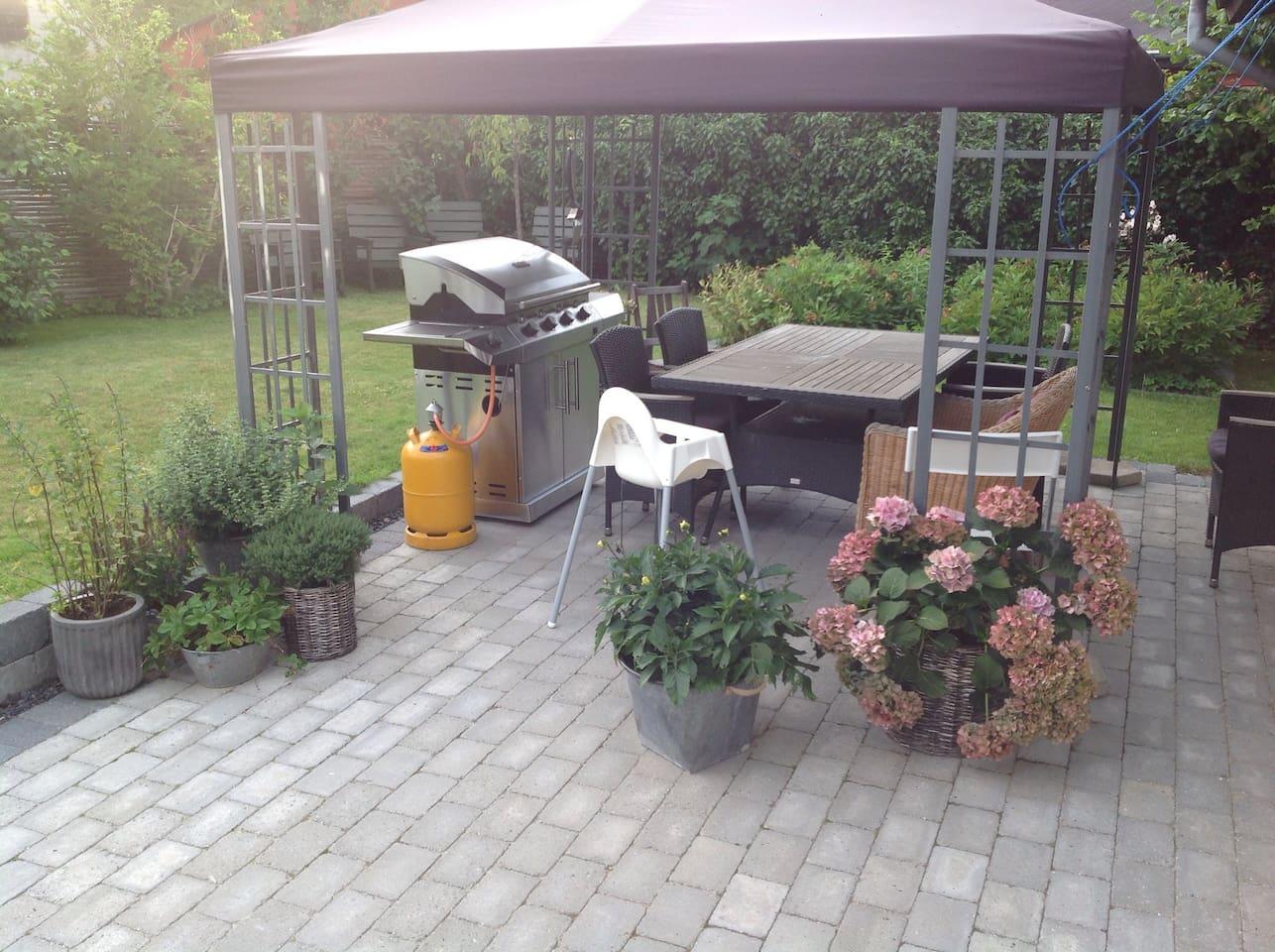 Main terrace and garden