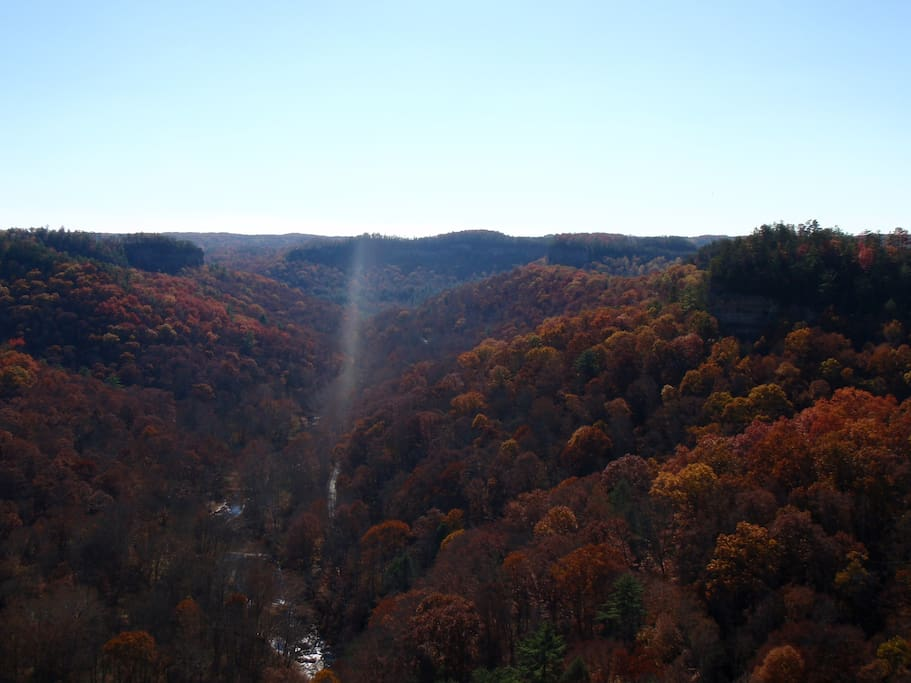 Red River Gorge on Top of Cloud Splitter