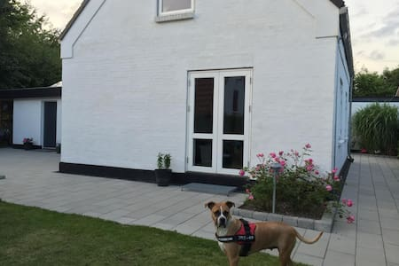 This is the house for the couple or the family. Its places 10km from Aarhus central, 5 min walk from a beautiful lake. There is an amazing garden with bbq, an entrance, dining room, livingroom, 2 bedrooms, kitchen and bathroom. Welcome!