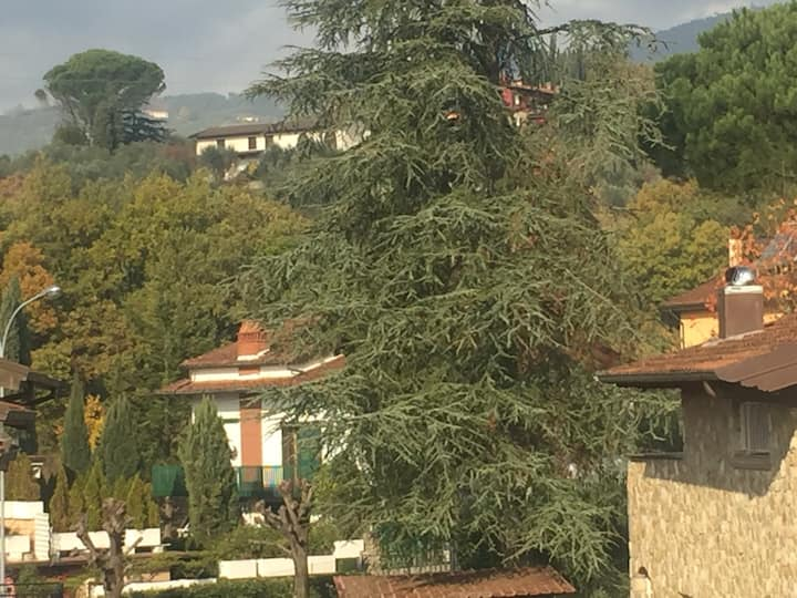 "Flat ""Le Mimose"" in Montecatini Terme"
