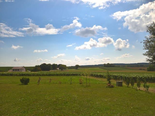 Maison calme avec terrasse à 12 km de Mâcon!