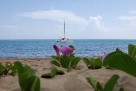 Playa Dorada, Dom. Rep. - Condominium