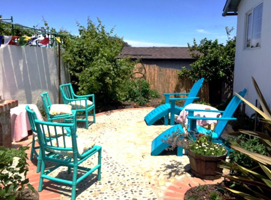 Back yard patio with lots of tomatoes and herbs.