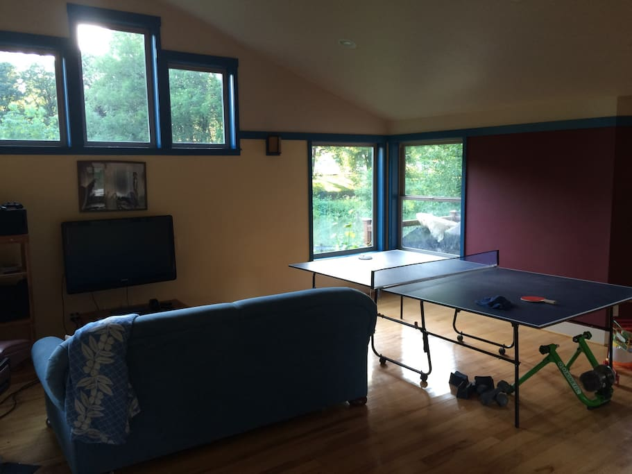 Spacious, light-filled room with peaceful country views, but also TV with PS3, Netflix, and ping pong table for your entertainment.