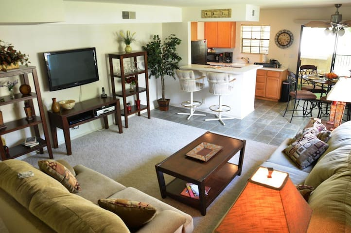 Living space with cozy couches and new furnishings