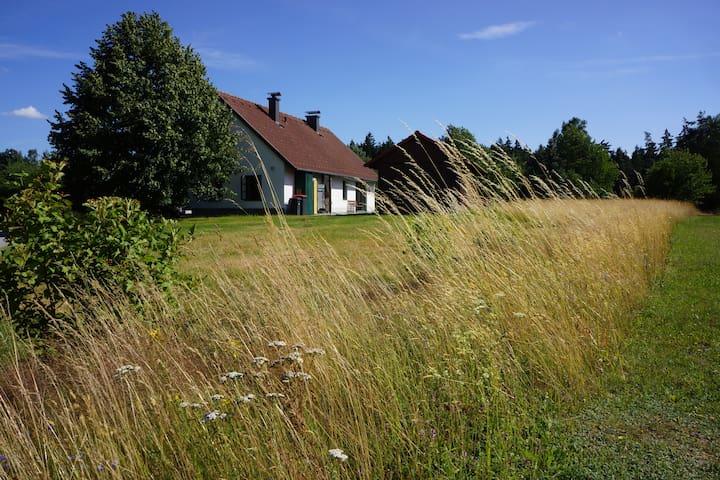 Waldviertler Kleinhaus - Amaliendorf - Casa