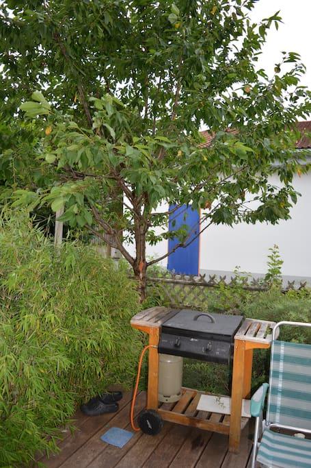 Garten mit Gasgrill