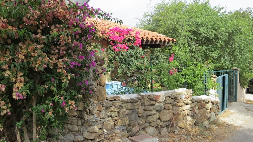 COSY AND SIMPLE HOUSE IN STRAULAS (SAN TEODORO)