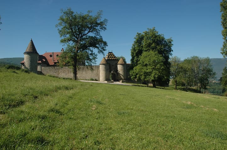 Gite dans Château en Haute Savoie, Annecy Genève