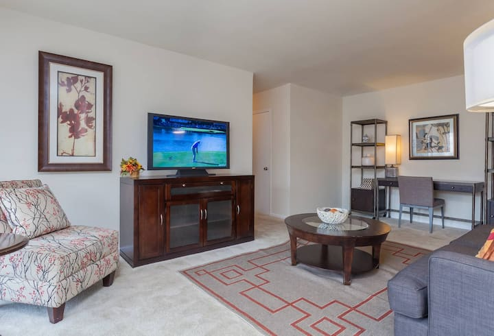 Cozy apartment for you   1BR in Alexandria