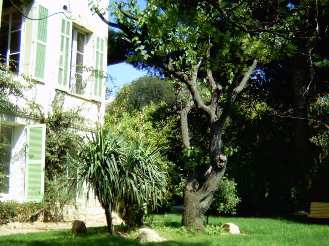 Fashionable Victorian House&Garden