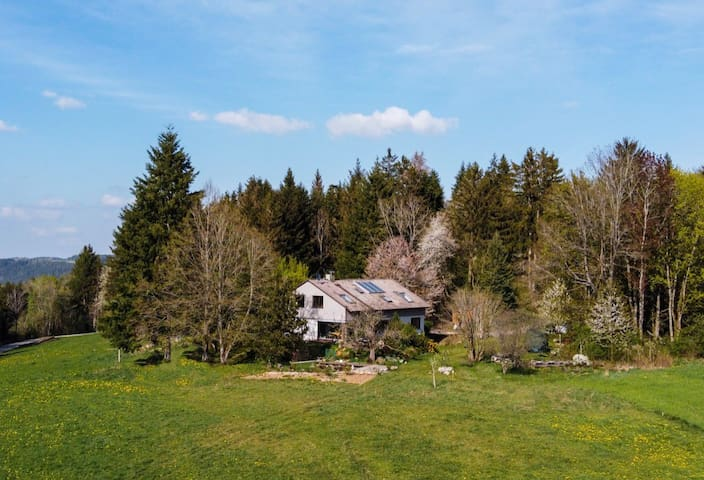 Wohnwagen Waldhaus