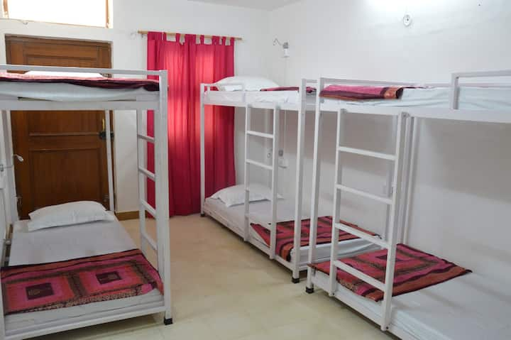 Bed In A 6 Bedded Mixed Dorm
