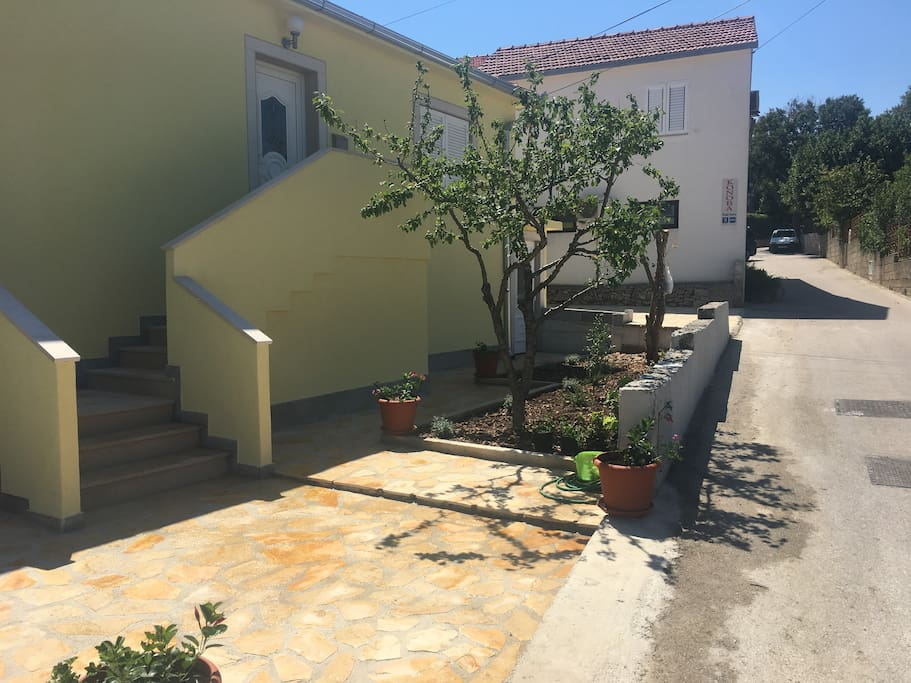 Front entrance with plum tree, rosemary plants, cumquat tree and pomegranate tree