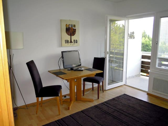 Studio Salzkammergut/Dachstein - Bad Mitterndorf - Appartement